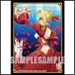 Bushiroad Sleeve Collection Extra: Fate/EXTRA Last Encore: Saber